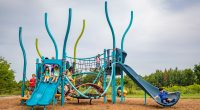 playground with double light blue slide and tall bendy posts in different shades of blue and green