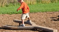 Fork shaped half tree stump with young boy balancing on top with an orange shirt