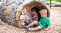 Log tunnel with two young children sitting inside the tunnel